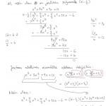 N-asteisen polynomiyhtälön ratkaiseminen, esim 4, tulostus