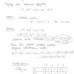Esimerkki N-asteisesta polynomiepäyhtälöstä, tulostus